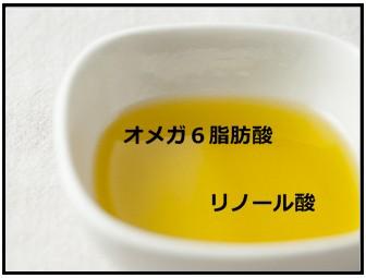 オメガ6脂肪酸の画像